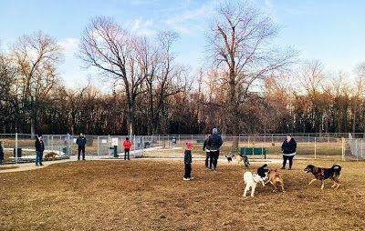 Waggertail Park in Riverdale Park