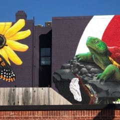 New mural in College Park, Maryland