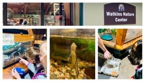 Watkins Nature Center in Upper Marlboro is a great spot for kids to explore local wildlife