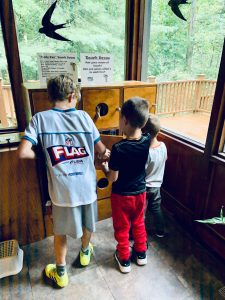 Lots of hands-on activities at the Nature Center
