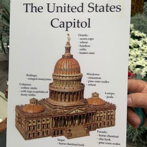 US Capitol at the US Botanic Gardens