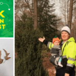 Walk with an Arborist and yr Baby at UMD