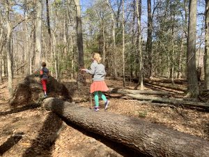 Kids playing by tree along Cash Lake Trail in Laurel, Maryland