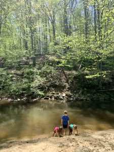 Rachel Carson Trail Silver Spring, kids dipping toes in the water