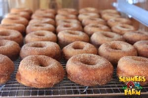 Apple Cider Donuts at Summers Farms