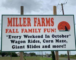 Miller Farms Pumpkin Patch